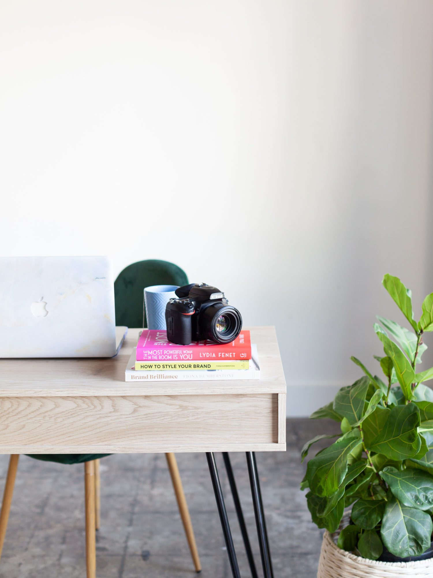 Camera and laptop on desk